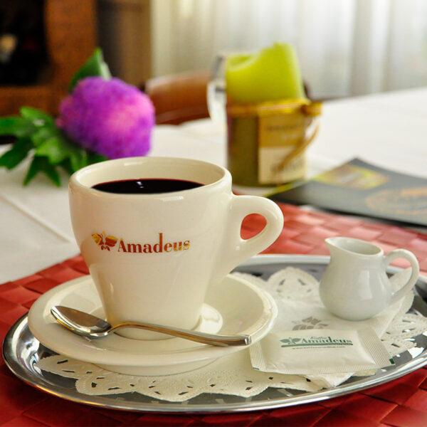 奧地利香醇黑咖啡
